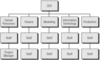 Organizational Structure Impacts - IT Project+ Study Guide, 2nd ...
