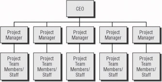 projectized organization Projectized organization-structure 1 projectized organization structure in projectized organizations, organizations arrange their activities into programs or portfolios, and implement them through the projects here, the project manager is in charge of.