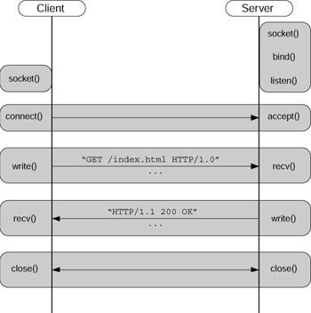 network programming for microsoft windows pdf