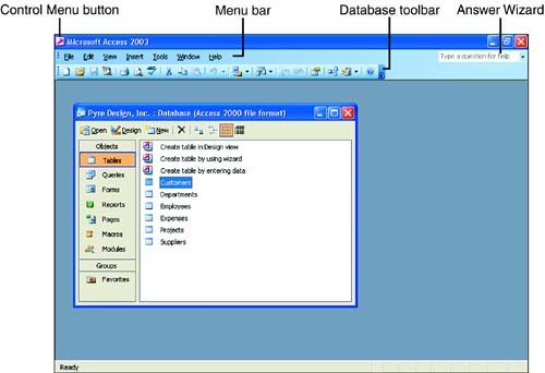Ms Access 2003 Portable
