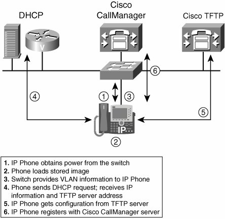 IP Phone Startup Process | Cisco IP Phones and Other User Devices