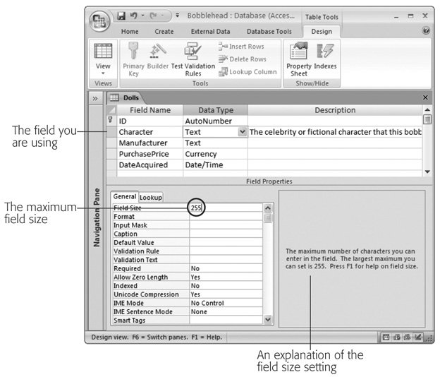Section 2 3  Access Data Types | Access 2007[c] The Missing