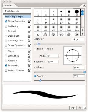 Brush Size and Shape | Photoshop CS2 Bible