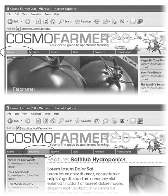 Section 14 4  Using Descendent Selectors   Dreamweaver CS3