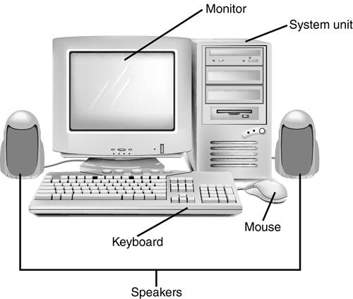 Computer Input & Output Devices