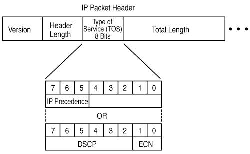description of ipv4 header fields The ipv4 packet header consists of 14 fields since an ipv4 header may contain a variable number of options, this field specifies the size of the header field size (bits) description copied: 1.
