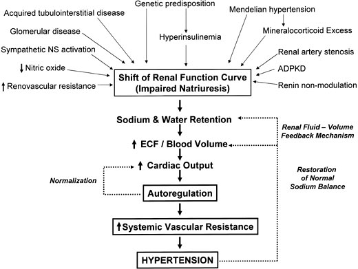 case study on pregnancy induced hypertension
