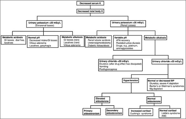 3 - hypokalemia or hyperkalemia, Skeleton