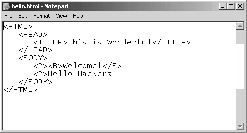 Understanding Web Languages   Penetration Testing and