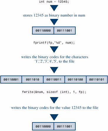 fwrite and fread return value from function