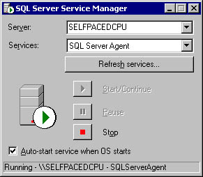 figure 3.6 - the sql server service manager dialog box.