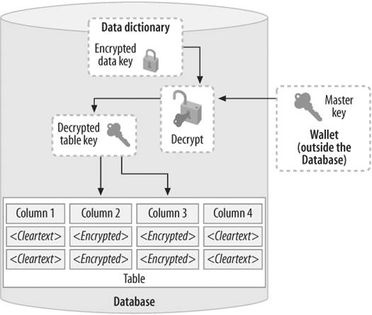Section 4.5. Transparent Data Encryption in Oracle Database 10g ...